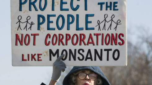 242413g-monsanto_protest_sign_protester